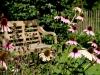 augustus, Villa Leda, bedandbreakfast-leer
